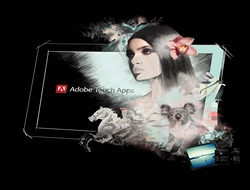 Adobe Photoshop Touch, İPadda